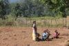 I progetti agricoli assicurano agli agricoltori un futuro migliore (csi)